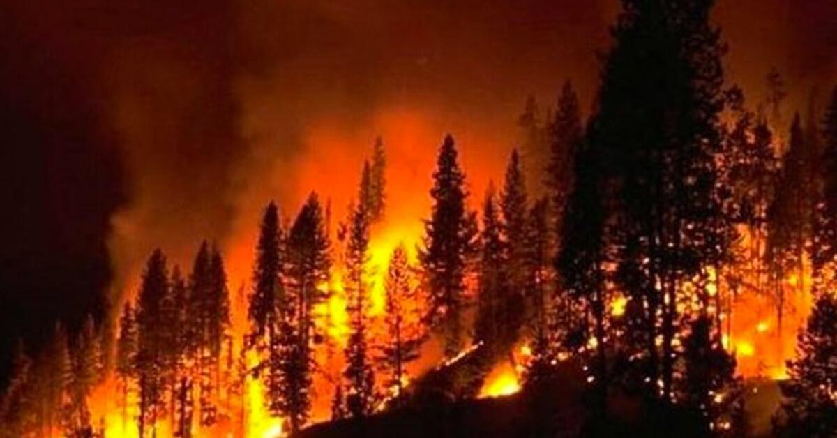 2003 Soğuk Toprakların Kızıl Felaketi