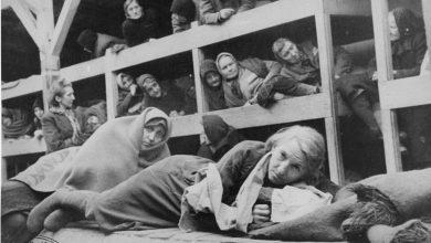Nazi Kampları ve İşlevleri