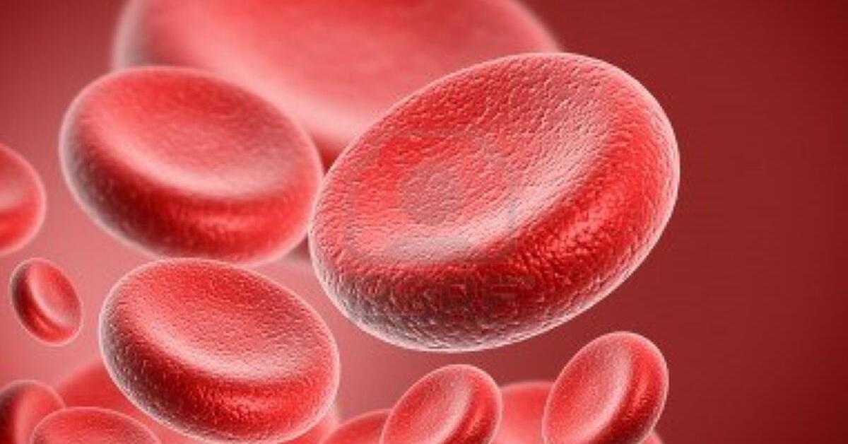 Hangi Kan Grubu Korona Virüsüne Karşı Daha Hassas?