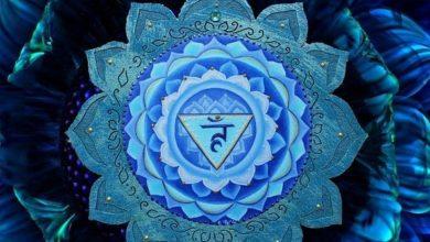 Boğaz Çakrası Vishuddha Nedir?